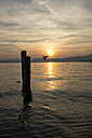 Italy, Veneto, Bardolino, Lake Garda at sunset - SARF002733