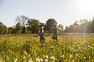 Brother and sister running on field of flowers at springtime - SARF002745