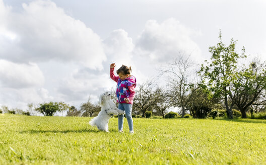 Little girl playing with her dog on a meadow - MGOF001927