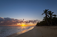 Dominican Rebublic, Tropical beach with palm trees at sunset - HSIF000465