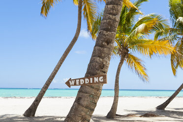 Dominican Rebublic, Tropical beach with palm trees and wedding sign - HSIF000480