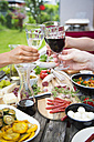 People clinking wine glasses and enjoying variety of Mediterranean antipasti in garden - SARF002767