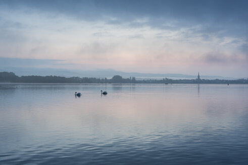 Germany, Constance district, Lake Constance, View to Radolfzell lakeshore in the morning - ELF001769