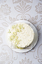 Fancy cake with curd elderberry creme decorated with elderberries - MYF001517