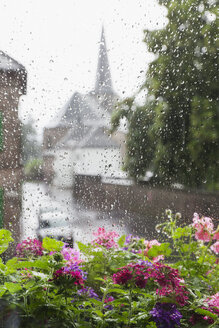 Germany, Cologne, heavy rain in summer, summer flowers in flower box and rain drops on windowpane - GWF004757