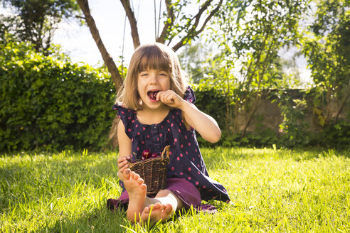 Little girl with punnet of cherries sitting on a meadow in the garden - LVF004962