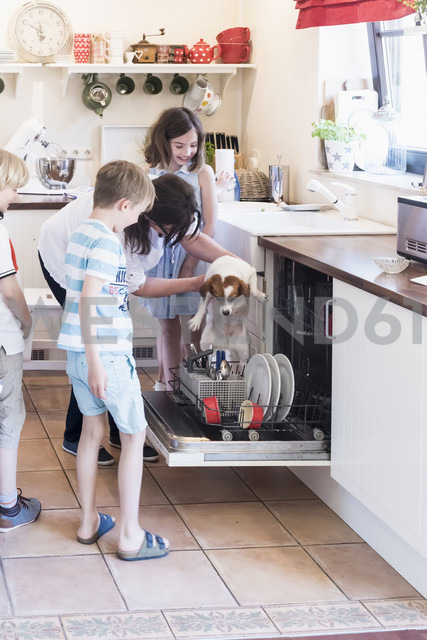 Family and dog in kitchen at dishwasher - MJF001863 - Jana Mänz/Westend61
