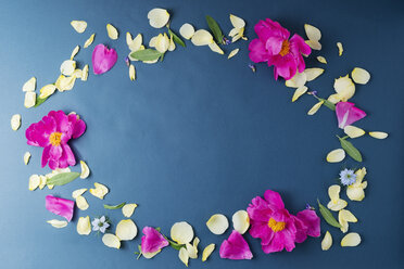 Sage leaves and peony and rose petals shaping an oval - MYF001527
