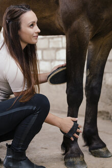 Young woman grooming leg of brown horse - MIDF000724