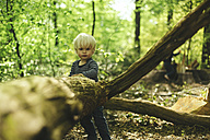 Little boy in forest - SBOF000137