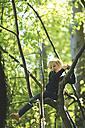 Girl in forest climbing in tree - SBOF000143