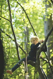 Girl in forest climbing in tree - SBOF000143
