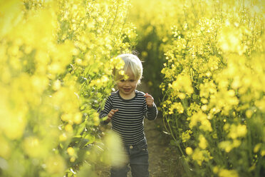 Boy in canola field - SBOF000167