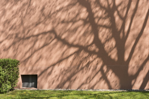 Shadow of a tree on facade - SKAF000017