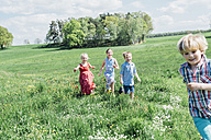 Happy children running and playing in meadow - MJF001904