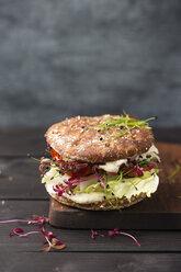 Veggie Burger, vegan, with salad, radish, tomato, rock chive - MYF001639