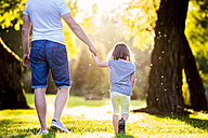 Back view of father and his little daughter walking on a meadow in the park - HAPF000579