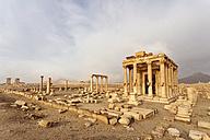 Syria, Homs, Palmyra, Palmyra - FPF000088