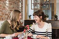 Two best friends sitting in a coffee shop having fun - KAF000170