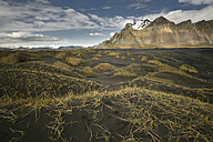 Iceland, landscape in the south - FDF000199