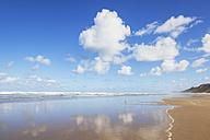 New Zealand, North Island, Northland, Ripiro Beach, Tasman Sea - GWF004784