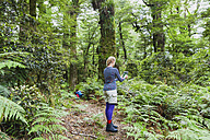 New Zealand, North Island, Te Urewera National Park, woman, hiker on trail taking photos with tablet - GWF004790