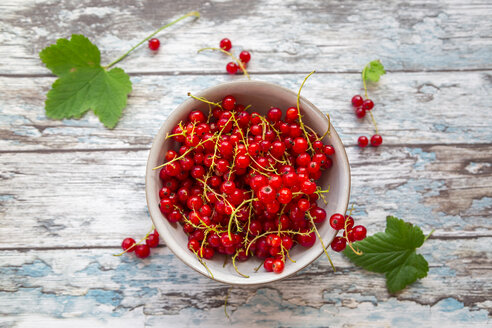 Bowl of red currants - SARF002805