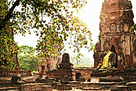 Thailand, Ayutthaya, Wat Mahathat at Historical Park - GIOF001291
