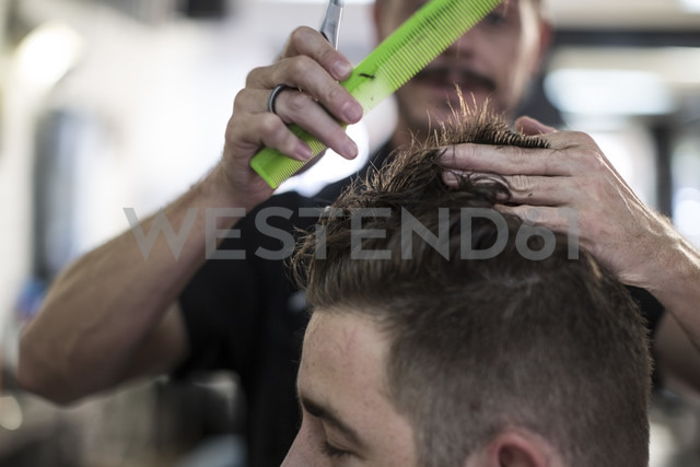 Barber combing and cutting hair of a customer - ZEF009218