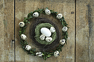 Wreath with quail eggs and goose egg and quail egg in an Easter nest - ASF005952