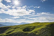 Austria, Tyrol, alpine meadow against the sun - MKFF000305