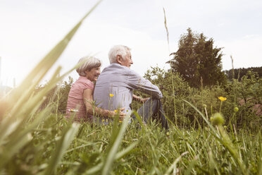 Relaxed senior couple sitting in meadow - RBF004827