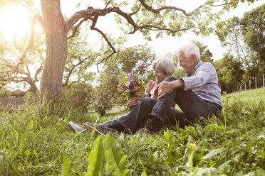 Happy senior couple with bunch of flowers in meadow - RBF004830