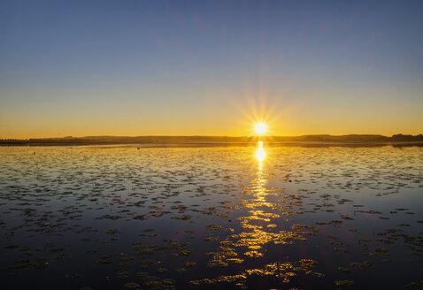 Germany, Baden-Wuerttemberg, Swabia, Upper Swabia, Lake Federsee, moor at sunrise - SIEF007071