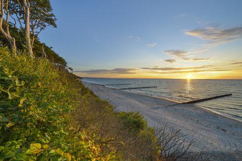 Germany, Nienhagen, Baltic Sea, Gespensterwald, beach in the morning - RJF000608