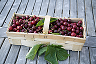 Splint basket of cherries - KLRF000435