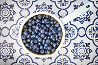 Saucepan of blueberries on tiles - LVF005184