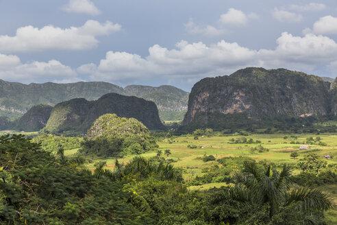Cuba, Pinar del Rio, Sierra de los Organos, Valle de Vinales - MABF000373