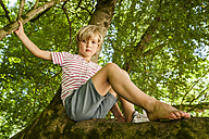 Portrait of little boy sitting on a tree in the forest - TCF005032
