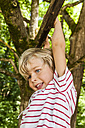 Happy little boy climbing on a tree - TCF005041