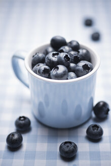 Blueberries in a cup - CZF000262