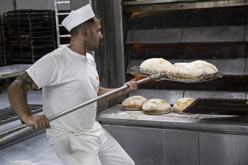 Baker taking out freshly baked bread from the oven of a bakery - ABZF000907