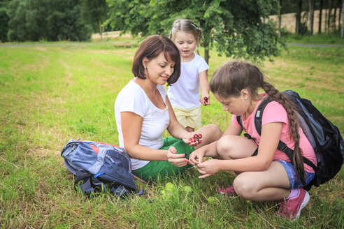 Mother giving apples, mother and daughters on meadow during hiking - VTF000552