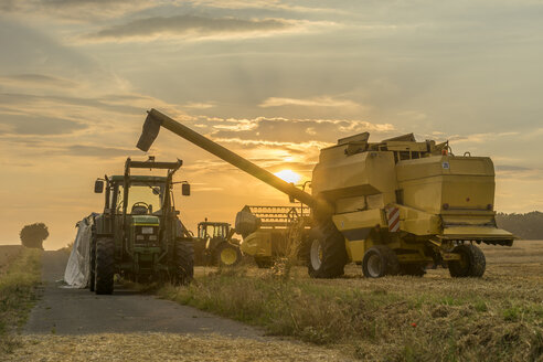 Germany, Lower Saxony, Wolfenbuettel, combine harvester at sunset - PVCF000880