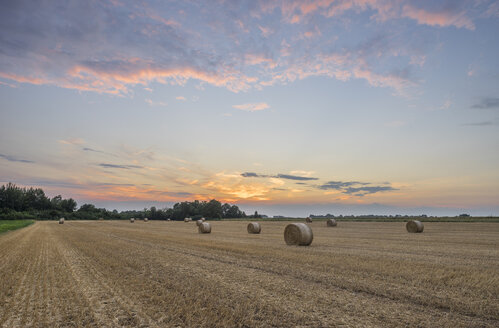 Germany, Lower Saxony, straw bales on field at sunset - PVCF000883