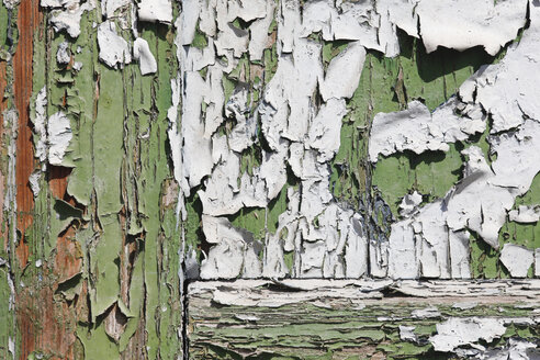 Weathered old wooden door with flaking green and white paint - JTF000770
