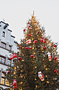 Germany, Cologne, decorated Christmas tree in front of brewery - GW004866