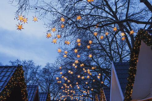 Germany, Christmas market with lighted Christmas stars hanging in the trees - GW004869