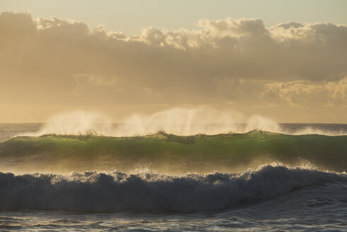Australia, New South Wales, Tasman Sea at sunrise, waves - GOAF000006