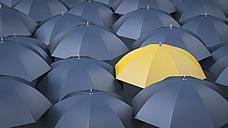 Yellow umbrella in between many black umbrellas - AHUF000214